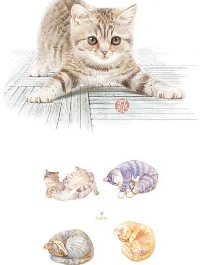 小清新水彩手绘猫咪psd素材