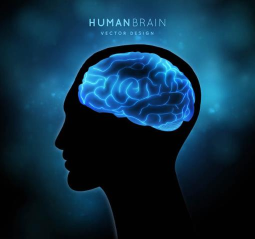 非常抢眼的是男子大脑中呈现出蓝色发光的大脑造型设计,男士其余部位