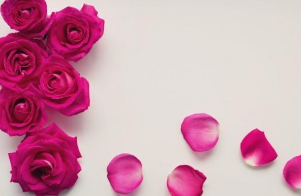 其中另一端是玫瑰花瓣零散的散落在那里,看著有點隨意的感覺,但是又不