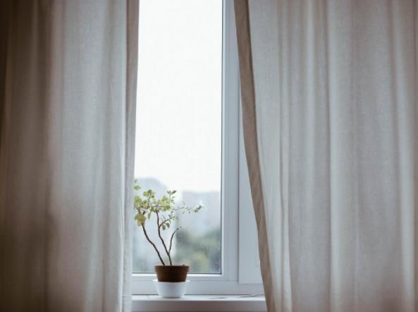 窗台盆栽高清图片