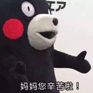 表情 > 熊本熊母亲节表情包下载  斗图表情包下载专题中的内容足够你