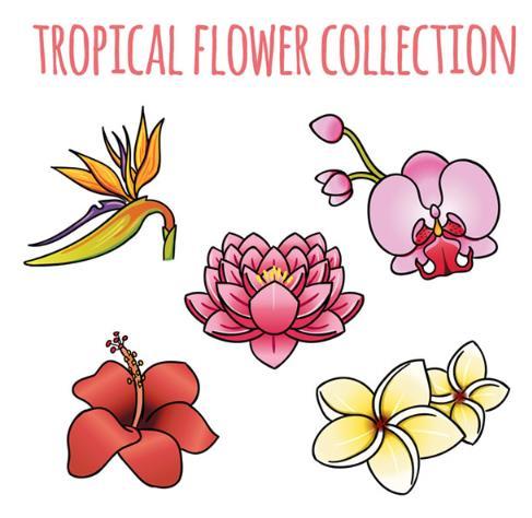 彩色卡通热带花卉设计矢量图