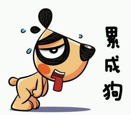 首页 软件下载 联络聊天 qq 表情 > 累成了狗表情包下载   在斗图表情图片