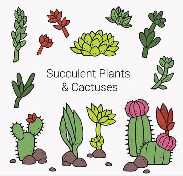 11款卡通多肉植物矢量素材