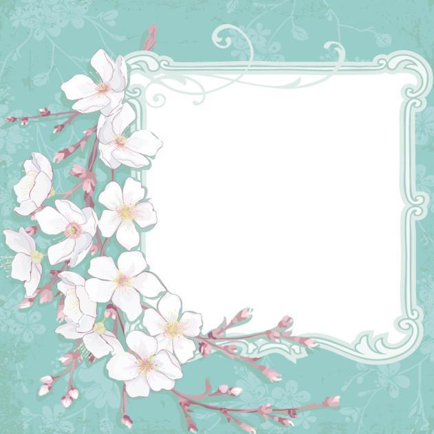 手绘白色樱花文本背景矢量图
