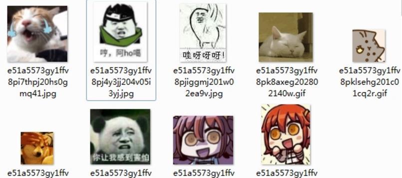 首页 软件下载 联络聊天 qq 表情 > 可爱动物小表情表情包下载  可爱
