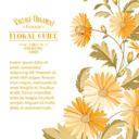 植物花卉主题装饰边框图案AI素材