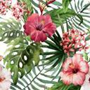 彩绘热带花卉植物矢量素材