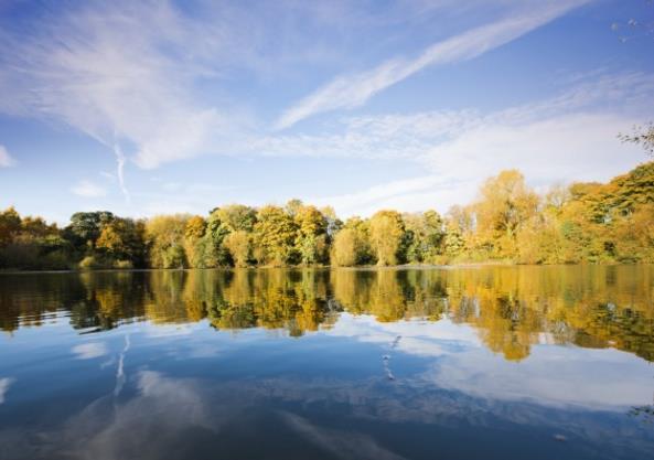 首页 资源下载 平面素材 精美图片 风景 > 唯美平静的湖水高清图片