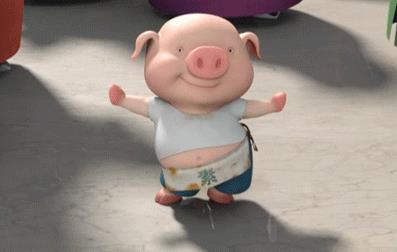 表情猪仔动图怎么不会表情图图片