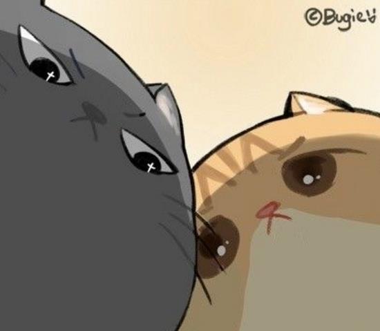你是不是在外面有猫了表情包下载(减轻不少的压力) 无图片