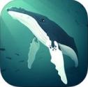 深海水族館iPad版