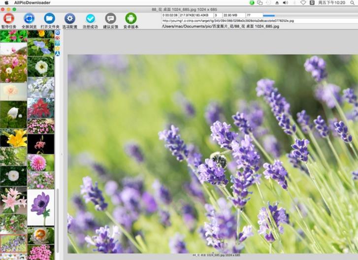 All网站图片批量下载器 mac版