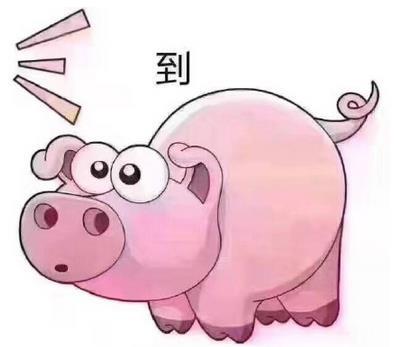 吃屎粉红猪表情包(可爱的粉色小猪为主) 完整版