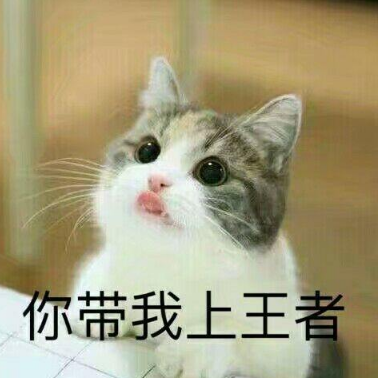 首页 软件下载 联络聊天 qq 表情 > 猫咪王者荣耀求带qq表情包下载