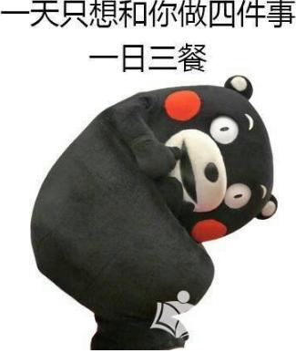首页 软件下载 联络聊天 qq 表情 > 熊本熊实力撩汉qq表情包下载