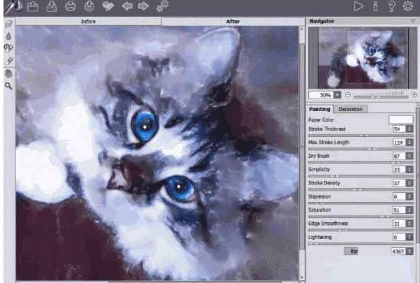 壁纸 动物 猫 猫咪 小猫 桌面 601_405