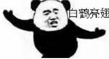 武功招式qq表情包(熊猫头练武功) 无水印版图片