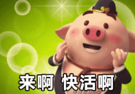 猪小屁动态表情包下载(超萌暖男) 完整版 - 可爱表情