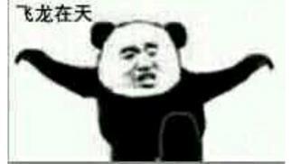 熊猫白鹤亮翅表情包下载图片