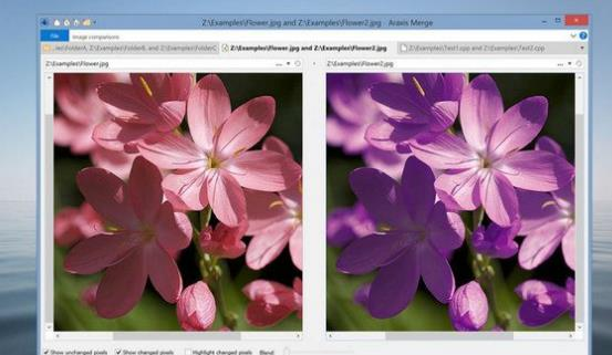 Araxis Merge Pro Mac版图片