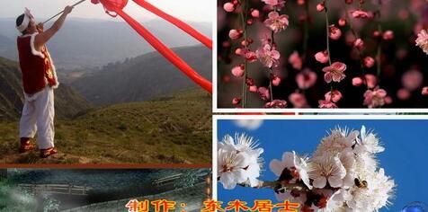 会声会影x9最新模板 桃花红自然风景视频模板