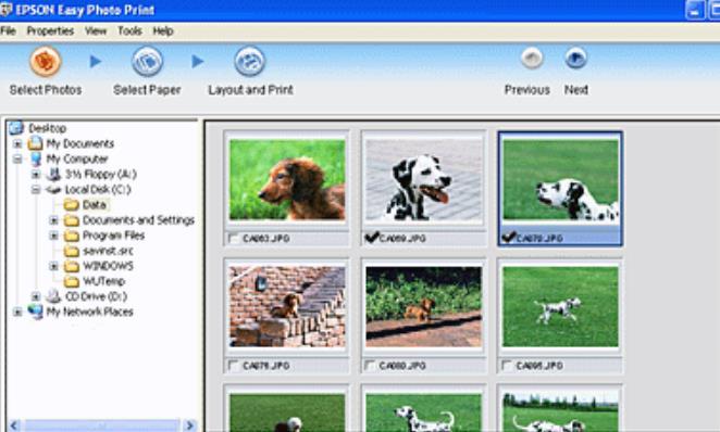 EPSON Easy Photo Print官方版