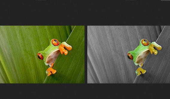 colorstrokes苹果电脑版 (图形图像设计软件) v2.3 简体中文版
