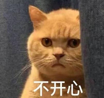 暗中委屈橘猫表情包版最新版(高清无水印) 免费版