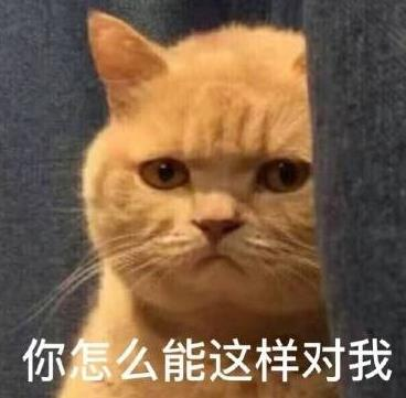 暗中下载橘猫水印版最新版委屈(表情无表情白宇动态高清包图片
