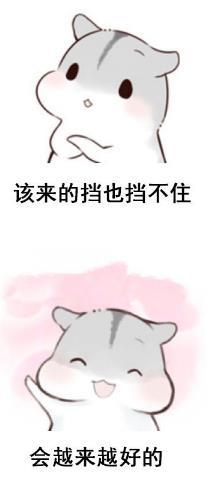 以超萌的松鼠可爱动人的表情在配上文字逗人开心,一切都会好起来的