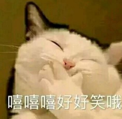 包不仅仅是看到了可爱的喵星人,通过看日常吸猫表情包中搞笑的方式,也