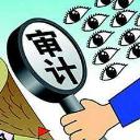 E审通社会审计协同作业系统PC版(社会审计协同管理) v3.21 官方版