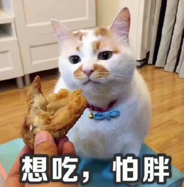 撸猫看戏表情下载(喵星人整版)完表情骂人夏娜表情包图片