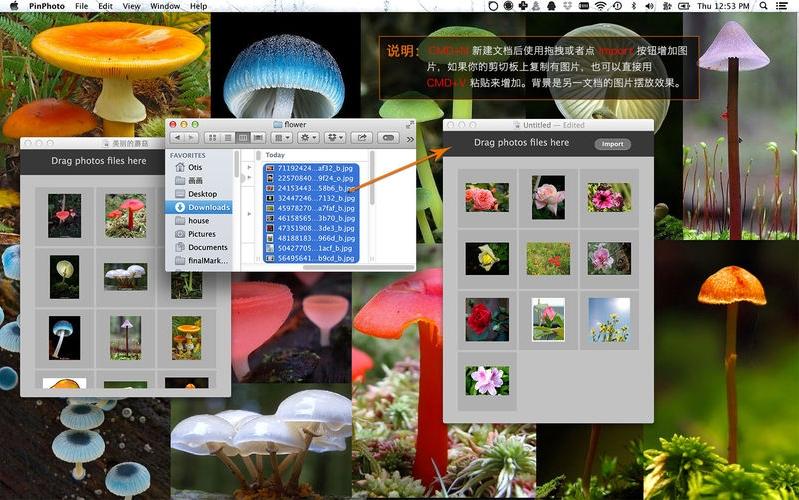 PinPhoto Mac版特色