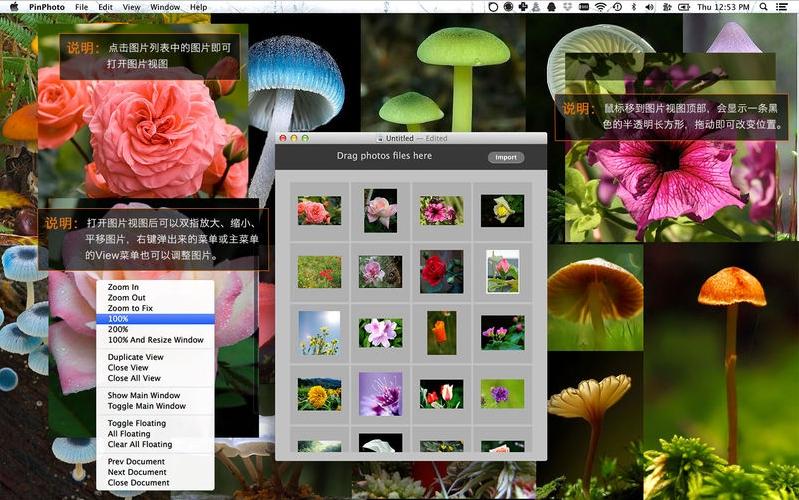 PinPhoto Mac版特点