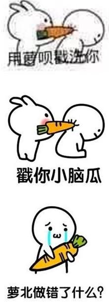 胡萝北表情大全喂猪的搞笑动态表情兔子下载1(胡萝北梗)免费图片