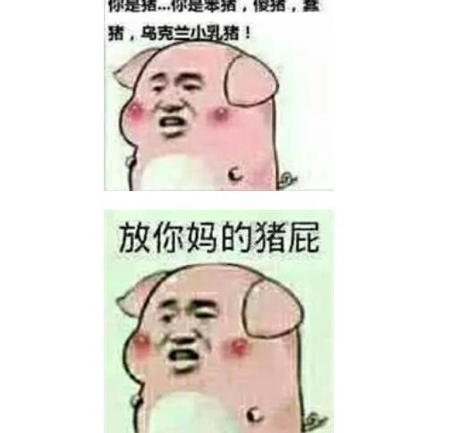 你这只猪大全表情包表情k歌v大全愉快图全民图片