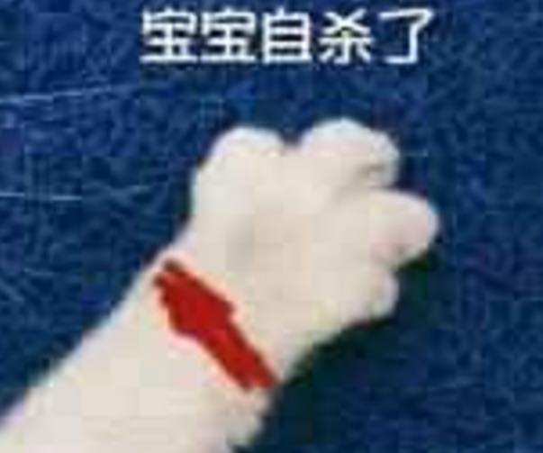 牵图片的纺织情为主(粉红色猫爪断头题)最新表情下载手表老子图片