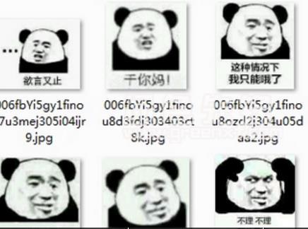 熊猫头怼人表情包免费版(必备的斗图神器) 最新版