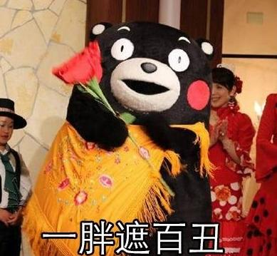 熊本熊胖了也有表情好处免费版下载1(熊本表情包·奇鲁英威熊图片