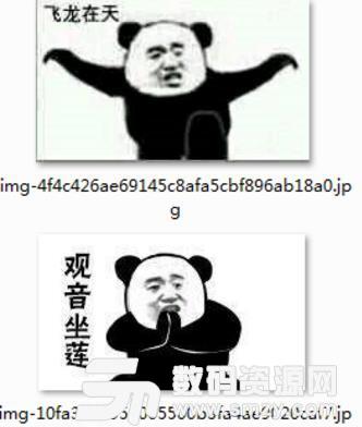 熊猫头武功招式表情包(qq表情) 免费版图片