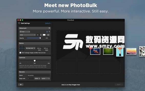 photobulk苹果电脑版界面