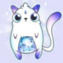 云撸猫英文版