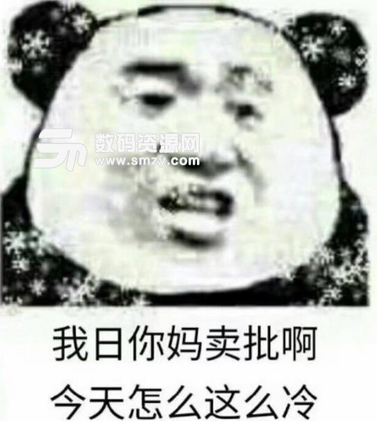 恶搞熊猫好冷表情包(老子才是最冷的) 最新版