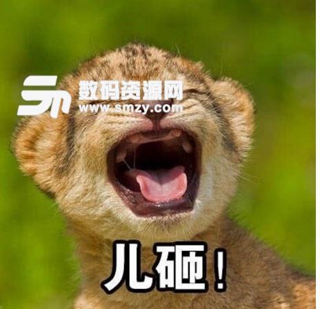 首页 软件下载 联络聊天 qq 表情 > 动物喊儿砸表情包下载  动物喊儿