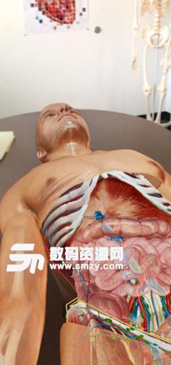 2018解剖图集
