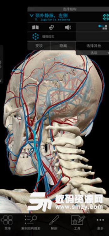 2018版人体解剖学图谱苹果版