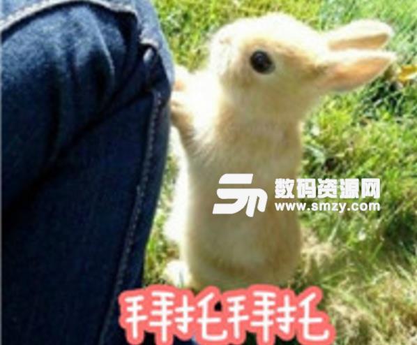 抖音我们兔星人表情包里有超多兔子表情,喜欢小兔子或者喜欢抖音的