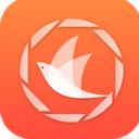 飞鸟浏览器APP最新版